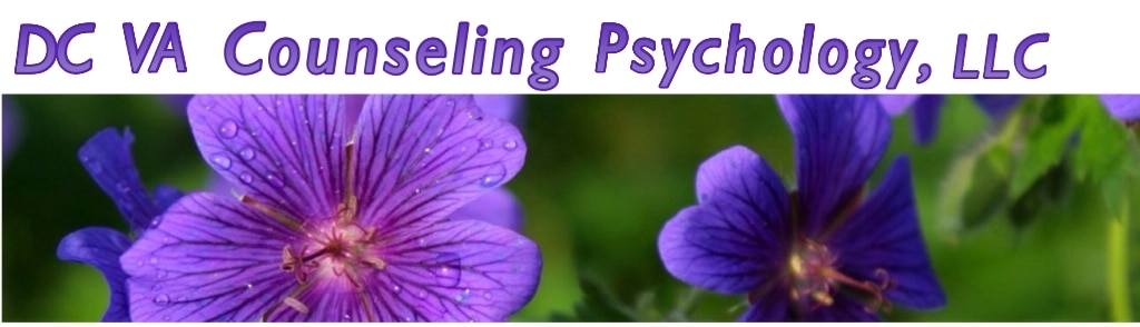 DC VA Counseling Psychotherapy, LLC header image